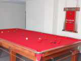 Snooker Contemporary Quedos Pool Tables 25